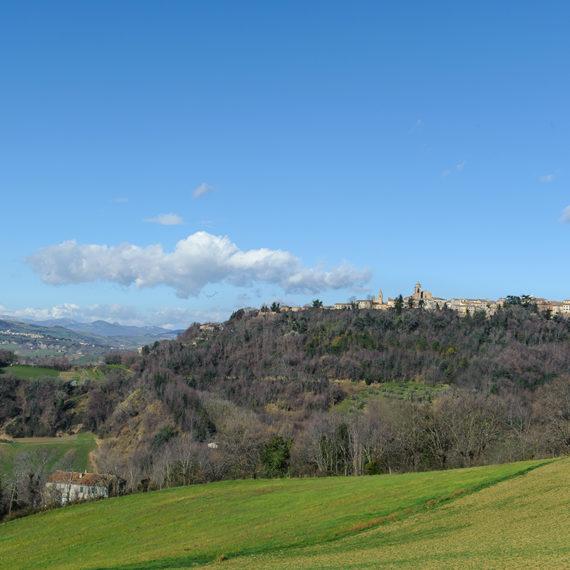 Panorama delle colline intorno a Mondaino